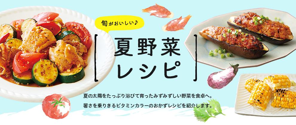 夏野菜レシピ