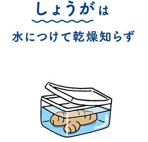 しょうがは水につけて乾燥知らず